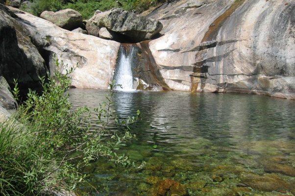 Charco con cascada que cae de la piedra. Está rodeado de vegetación